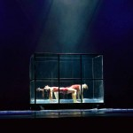 Ballett zu Aquarium
