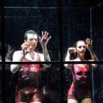 Ballett im Aquarium